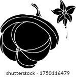 vector drawing of pumpkins.... | Shutterstock .eps vector #1750116479