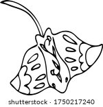 vector stingray illustration.... | Shutterstock .eps vector #1750217240