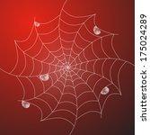 abstract white cobweb with rain ...   Shutterstock . vector #175024289