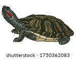 pet turtle red eared slider... | Shutterstock .eps vector #1750362083