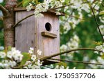 Old wooden birdhouse on a...