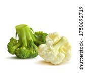 broccoli and cauliflower low... | Shutterstock .eps vector #1750692719