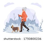 old woman walking with dog in...   Shutterstock .eps vector #1750800236