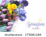 Springtime Is Here Sample Text...