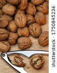 Nutcracker And Walnuts  The...