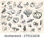 sketch of vegetables and fruits ... | Shutterstock .eps vector #175112618