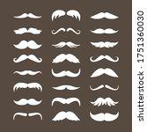 Mustache Set. Stylish Look...