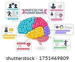 functional areas of the human...   Shutterstock .eps vector #1751469809