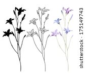 vector set of bellflower on a... | Shutterstock .eps vector #175149743