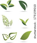 collection of green leafs on... | Shutterstock .eps vector #175159010