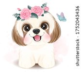 cute little shih tzu with... | Shutterstock .eps vector #1752043436