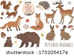 Autumn Animal Illustration...