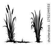 Vector Silhouette Of Cattail...