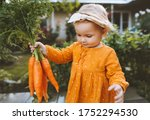 Child Holding Carrots In Garde...