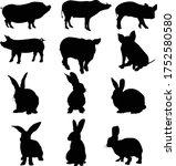 pig and rabbit vector design...   Shutterstock .eps vector #1752580580