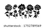 peony and anemones hand drawn... | Shutterstock .eps vector #1752789569