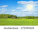 spring forest in sunny day   Shutterstock . vector #175294424