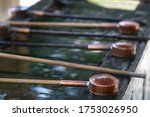 Ladle Water And Wells. To...