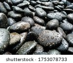 Many Dark Stones Of Various...