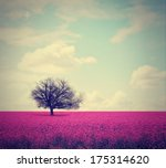 a beautiful tree in a pretty... | Shutterstock . vector #175314620