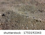 Natural Texture Of Wet Sand....