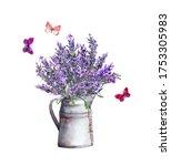 Fresh Lavender Flowers In...