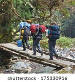 three of tourists are on a path ... | Shutterstock . vector #175330916