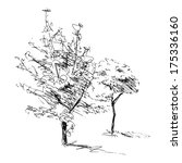 Sketch Of Two Trees. Vector...