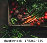 fresh vegetables  radish ... | Shutterstock . vector #1753614950