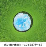 Sunny Summer Stereographic...