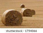 Hay Bails In Field