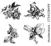 wild flowers isolated... | Shutterstock .eps vector #1754158499