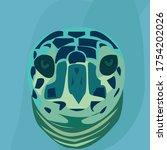 Close Up Sea Turtle Face Green