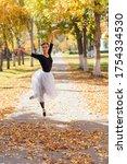 Woman Ballerina In A White...