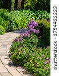Colorful Summer Garden Design...