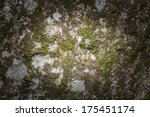 Stone and moss texture with center soft light - stock photo