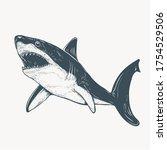 Hand Drawn Shark Artwork...