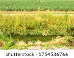 """""""the Vunt"""" Waterway Brook In..."""