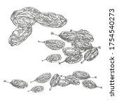 raisins. vector illustrations...   Shutterstock .eps vector #1754540273
