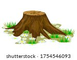 Tree Stump Isolated On White...
