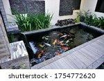Minimalist Koi Fish Pond From...