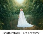 Fantasy Woman Queen In White...