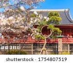 Ueno  Japan   March 31 2020 ...