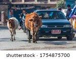 Kathmandu  Nepal   January 201...
