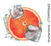 half a grapefruit with ice... | Shutterstock .eps vector #1754993663