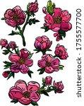 Dog Roses Set  Pink Flowers...
