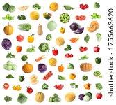 set of fresh ripe vegetables on ... | Shutterstock . vector #1755663620