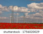Landscape With Poppies And...
