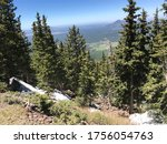 The top of Arizona Snowbowl in the July. Located near Humphrey