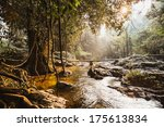 Rapid Stream From Waterfall In...